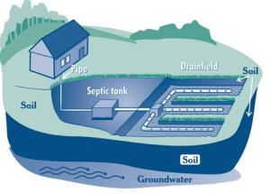 septic-system-graphic