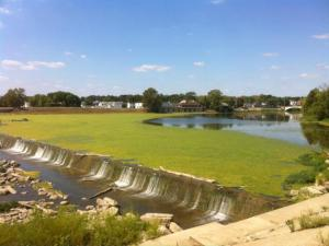 photo of Island Park Dam with an algae bloom in 2012